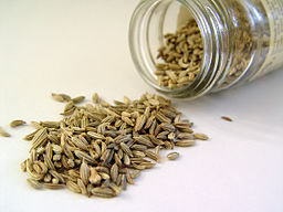 256px-Fennel_seed